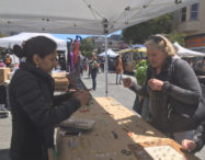 Inner Sunset Flea - May 2017